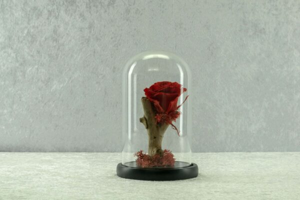 Forever-Roses-σε-μικρή-γυάλα.