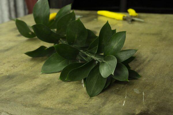 Μπουκέτο με λουλούδια Lilies Stargazer. (6)